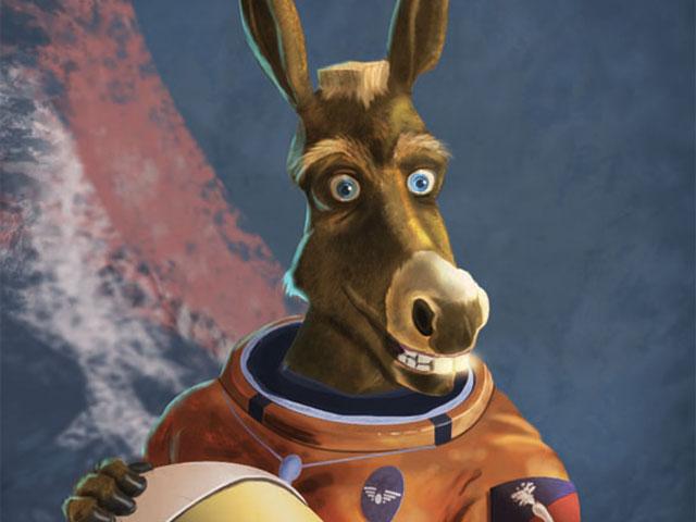 donkey_t